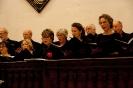 Concert met Lingua Musica_7